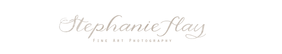 Stephanie Flay Photography | Grafton Wedding, Family and Portrait Photographer logo
